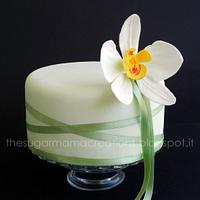 Orchid moth cake for my mom