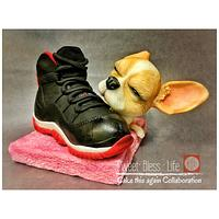 Air Jordan XI - Cake This Again Collaboration