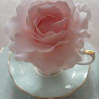 Bloom in a Tea Cup