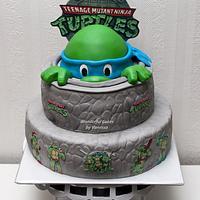 Peek-a-Boo Ninja Turtle