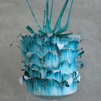 'Splash' cake