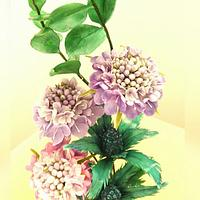 Free formed Scabious Flower, Sea Holly and Eucalyptus