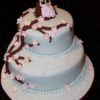 Owl & Cherry Blossom Cake by Helen Campbell