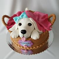 Doggy in basket