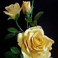Yellow rose and bougainvillea