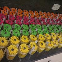 160 orange, green, yellow, pink gerbera flower wedding cupcakes