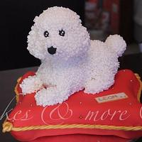 Poodle pillow cake