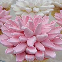 Marshmallow Cupcakes!