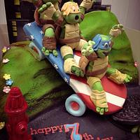 Ninja Turtle Cake.