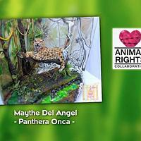 Animal Rights Collaboration