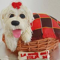 a sweet Puppy
