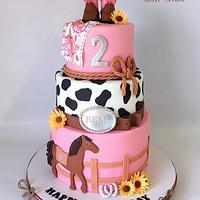 Ride 'em Cowgirl Cake