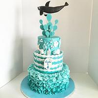 Shamu Cake