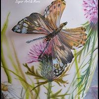 Butterfly hand painted