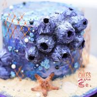 Buttercream Barnacle Cake