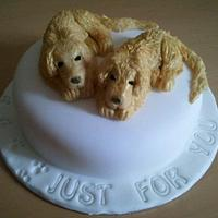 Chocolate dogs cake
