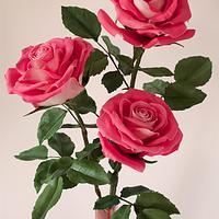 Rosas pasta de goma - Gumpaste roses