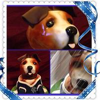 Footie Dog by Carmel Millar