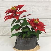 Feeling Festive - Sugar Poinsettias