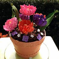 Flower Pot With Parrot Tulips