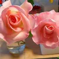SUGAR ROSE AND REAL ROSE !