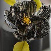 Crackle Fantasy Flower in black/white
