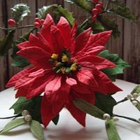 CPC Red & Green Collaboration - Poinsettia, Holly & Mistletoe x