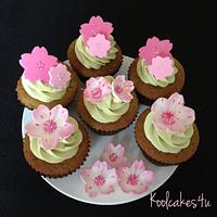 Japanese cherry blossom green tea cupcake