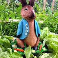 CPC Beatrice Potter Collaboration: Peter Rabbit!