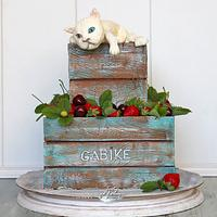 Wooden box with strawberries and cat