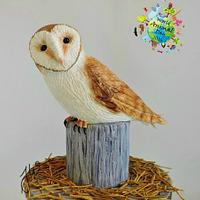 Barn Owl - World Animal Day Collaboration