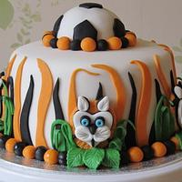 Hull 'Tigers' City Cake.