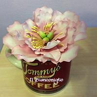 Peonia in  the cup