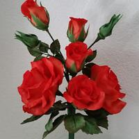 Different Roses...