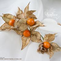 Wafer-Paper Physalis