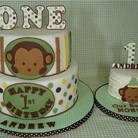 Mod Pod Pop Monkey First Birthday Cake & Smash Cake