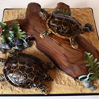 Terrapins cake