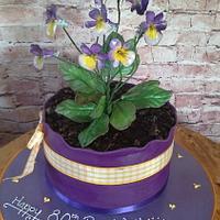 plant cake