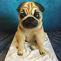 Doug the pug cake