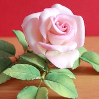 Gumpaste Rose