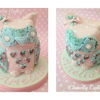 'Octavia' The Owl Doorstop Cake