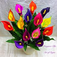 Colourful Calla's