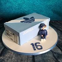 Life if a teenager - sweet 16 cake