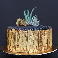 Chocolate Cake with chocolate Succulents
