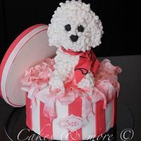 Poodle cake.. Again ;)