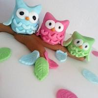 Pretty little owl cake