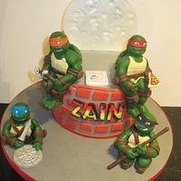 teenage mutant ninja turtles !!!