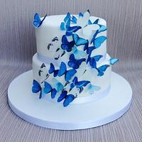 Blue butterfly wedding cake by Sweet Designs by Jo
