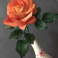 The month of roses