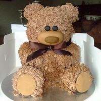 my first teddy cake by lesley hawkins